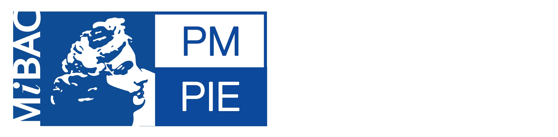 POLO MUSEALE DEL PIEMONTE